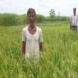 satisfied-farmer-4